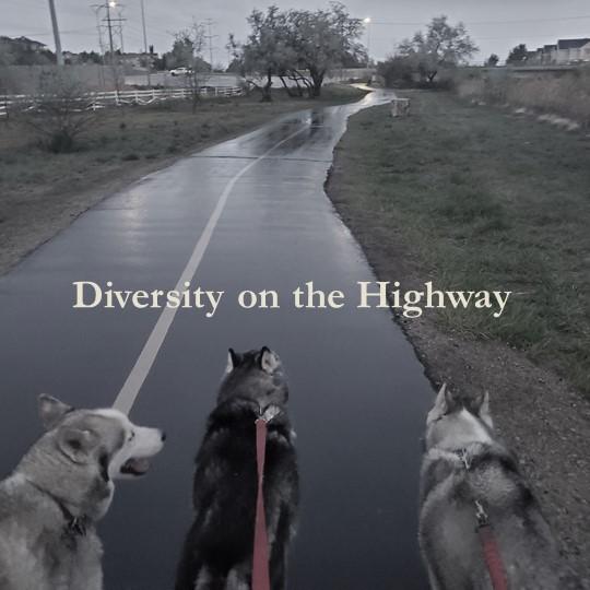 Diversity Highway Huskies